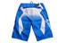 Fox Giant Demo DH Shorts Men blue